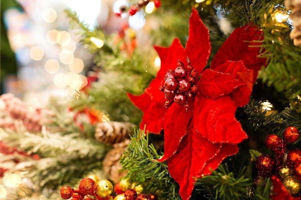 christmas-3823672_960_720
